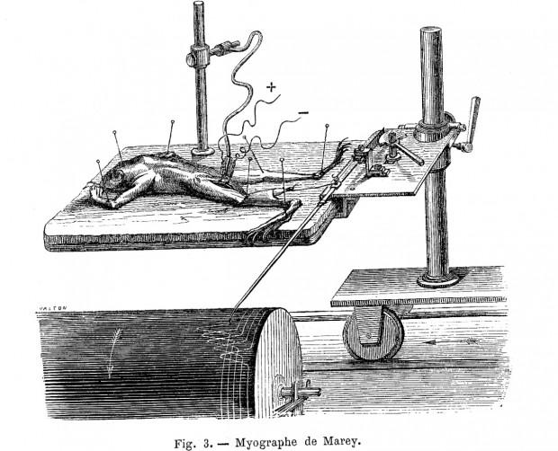 """Marey's Myograph"" 1873"
