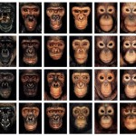 "James Mollison Photography: ""James & Other Apes"" (2004)"