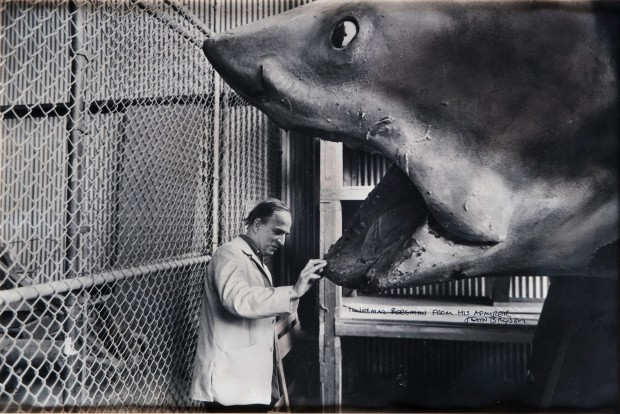 Ingmar Bergman and the shark from the movie Jaws, by John Bryson, 1975