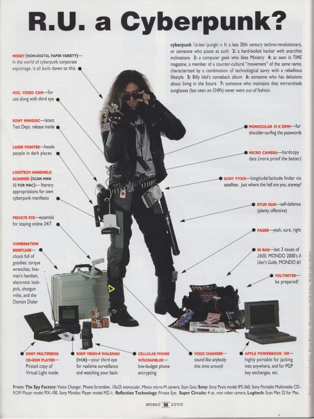 """R.U. a Cyberpunk"" from 'Mondo 2000' magazine, no. 10, 1993, p. 30."