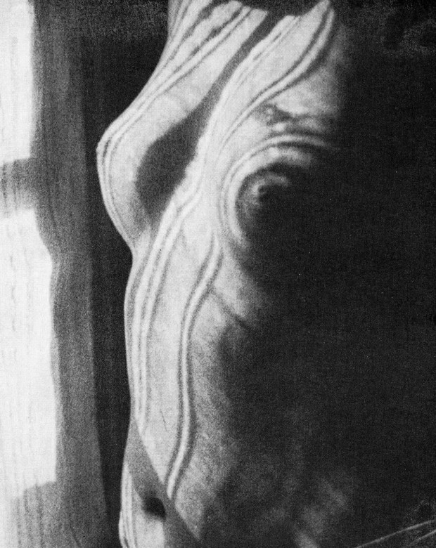 """Torso"" by Man Ray, gelatin silver print, 7 1/8 x 5 11/16"" (18.1 x 14.4 cm), 1923. Gift of James Thrall Soby. © Man Ray Trust / Artists Rights Society (ARS), New York / ADAGP, Paris"