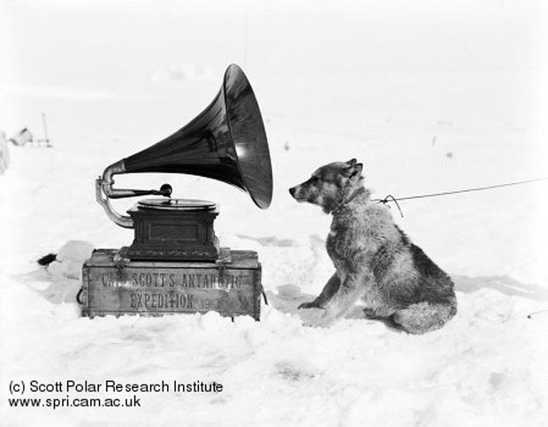 """Chris and the Gramophone"" by H. Ponting, 1911. Image retrieved from The Scott Polar Research Institute. Record no. P2005/5/1177"