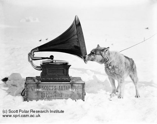"""Chris and the Gramophone"" by H. Ponting, 1911. Image retrieved from The Scott Polar Research Institute. Record no. P2005/5/1178"