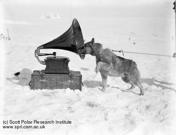 """Chris and the Gramophone"" by H. Ponting, 1911. Image retrieved from The Scott Polar Research Institute. Record no. P2005/5/1179"