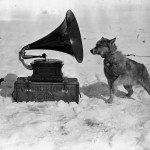 """Dog Chris, listening to the gramophone, Antarctica"" by Herbert Ponting, c. 1911"