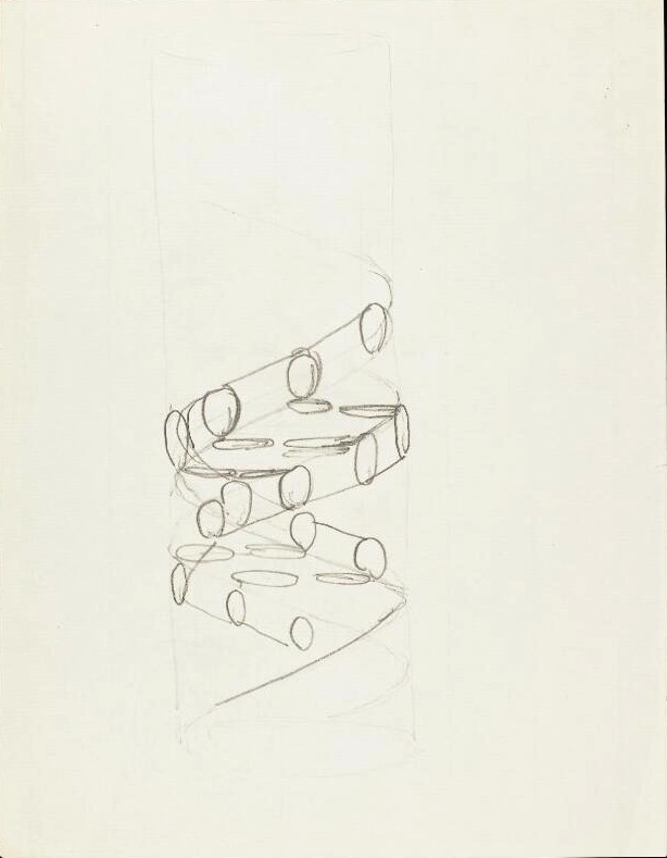 """""""DNA"""" sketch from the Francis Crick archive, c. 1953: The sheets include a sketch of a double helix, a note of """"possible configuration / Bases inside"""". Item PPCRI/H/1/16. Retrieved from The Wellcome Library."""