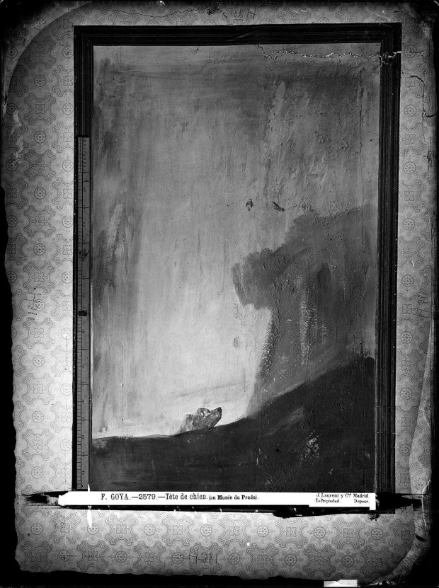 "Black-and-white photo of Goya's painting ""Perro semihundido"" taken by J. Laurent while the painting was still on the wall inside Goya's house, sometime between 1863 and 1874. Retrieved from Wikimedia Commons."